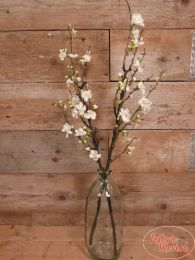 Bloesemtak Quince 87 cm wit